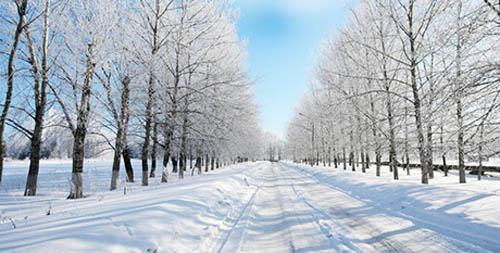 wintercoldd
