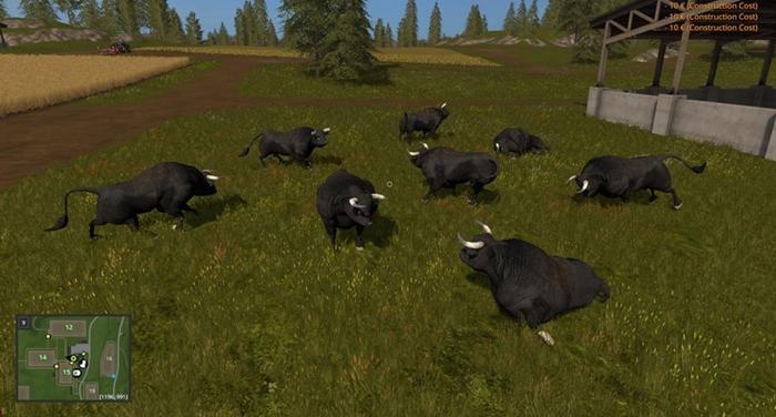 black-bull-fs17