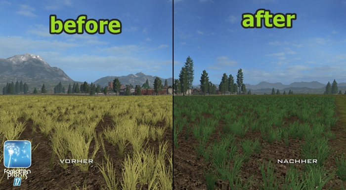 forgotten-plants-wheat-barley-01
