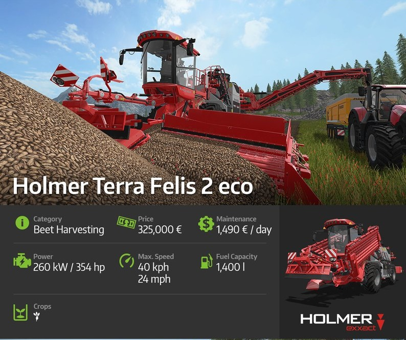 holmer-terrafelis2eco