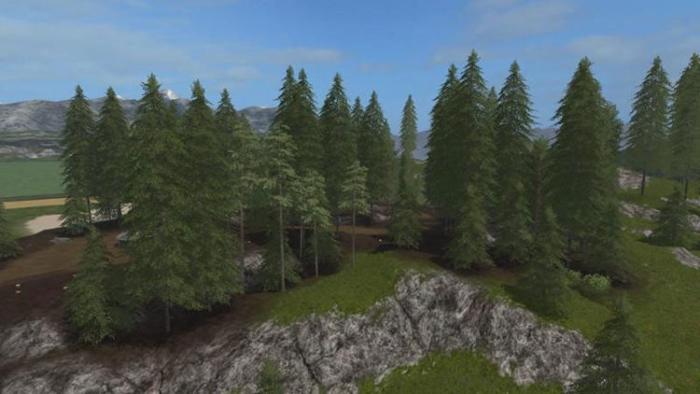 pine-fs17-2