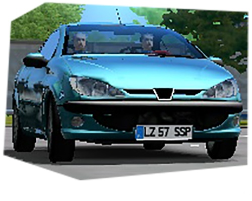 Polish License Plates v1