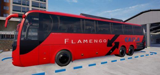 fernbus-busflamengo