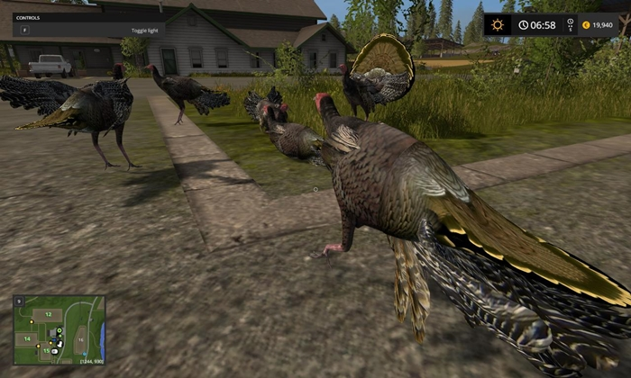 fs17-animalobject-turkey