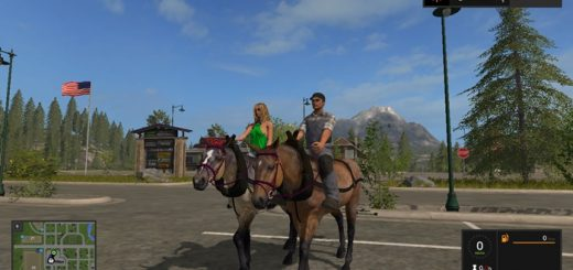 horse-fs17