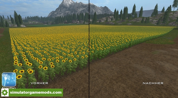 sunflowersretextures-02