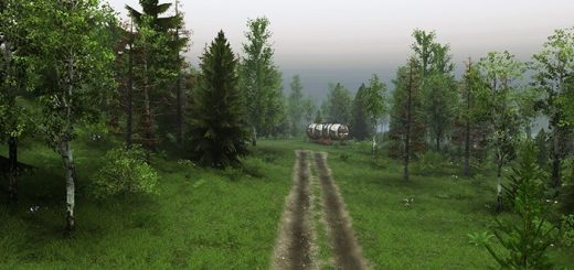 forest_road_map