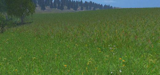 new_grass_texture