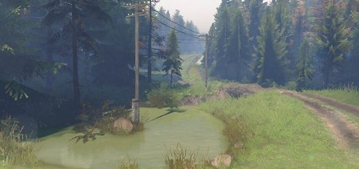 pine_forest_2_map